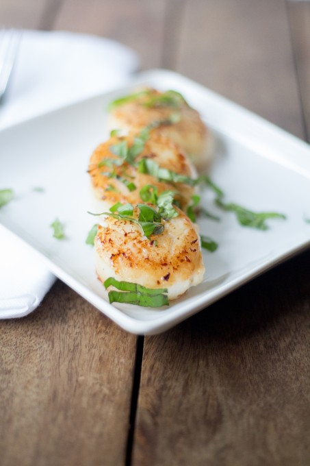 Scallops on a plate